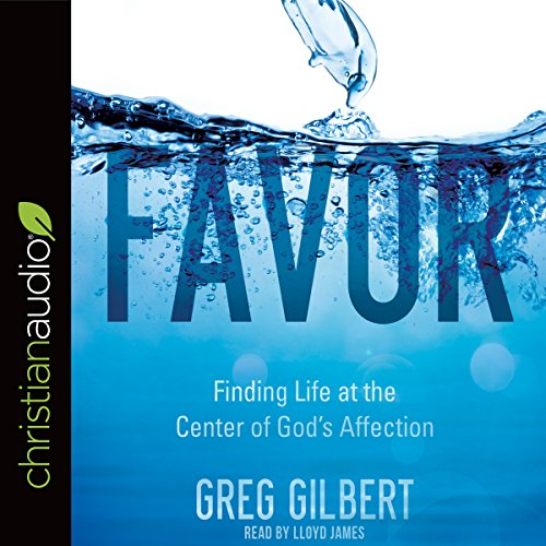 Favor audiobook cover art