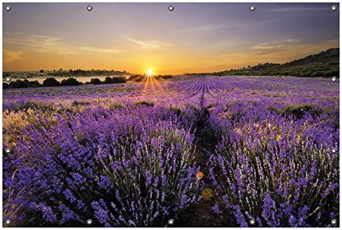 Wallario Garten-Poster Outdoor-Poster, Sonnenuntergang über dem Lavendel in Premiumqualität, für den Außeneinsatz geeignet