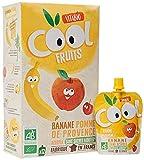 Vitabio Cool Fruits - Gourdes Pomme de Provence Banane Acérola Bio Sans sucre ajoutés - 12 x 90 g