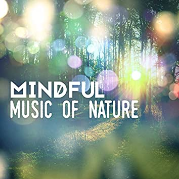 Mindful Music of Nature