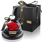 Your Roses - Rosa infinita, in barattolo , con scatola regalo per lei, moglie, fidanzata, idea regalo, San Valentino, festa della mamma, compleanno, anniversario di matrimonio, Natale, anniversario