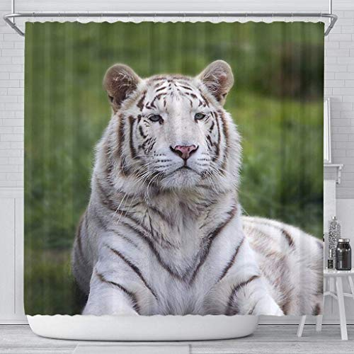 Paws With Attitude White Bengal Tiger Print Shower Curtains