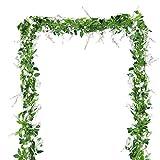 BELLE VOUS Artificiel Glycine Fleurs Vignes (4 Pièces) - Longueur 2m (6,6ft Chaque Vigne) - Blanches Faux Soie Amovible Wisteria Fleurs et Feuilles pour Jardin, Mariage Floral Décoration