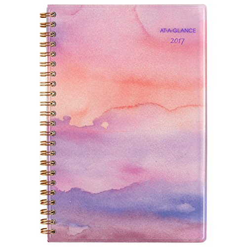 """AT-A-GLANCE Weekly / Monthly Planner / Appointment Book 2017, 4-3/4 x 8"""", Paradise Punch (119-200)"""