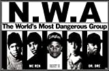 NWA Group Shot Poster Drucken (86,36 x 55,88 cm)