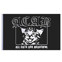 Flagge schwarz Motiv All Cats Are Beautiful 150x100 cm von Impact Mailorder