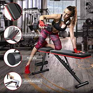 Homfio Weight Bench for Full Body Workout, Adjustable and Foldable Workout Bench Press for Strength Training Benches, with Fast Folding Incline Decline Exercise Workout Utility Gym Bench Bench for Home Gym