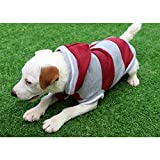QKEMM Abrigo de Invierno con Capucha para Perro Jersey de Algodón a Rayas con Capucha y Terciopelo Ropa de Perro para Perros Pequeños y Medianos Rojo S