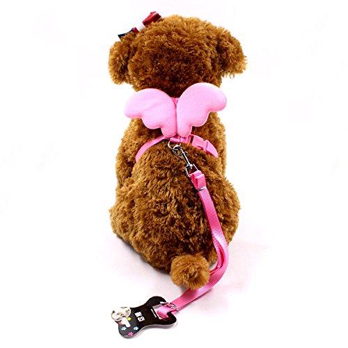 wicemoon niedliche Engel Pet Hundegeschirr Leine und Halsbänder für kleine Pet-Set Designer Wing verstellbar, Nylon, rose, M
