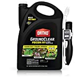 Ortho 475705 GroundClear Poison Ivy & Tough Brush Killer: Ready to Use with Comfort Wand, Kudzu, Wild BlackBerry, Vines & More, Kills to The Root, 1.33 gal,