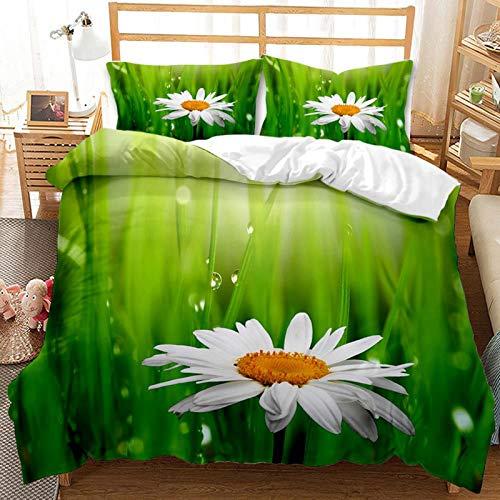 QIAOJIN Juego de ropa de cama de 2/3 piezas, diseño moderno con cremallera, funda de edredón y funda de almohada, microfibra de alta calidad transpirable (b,200 x 200)