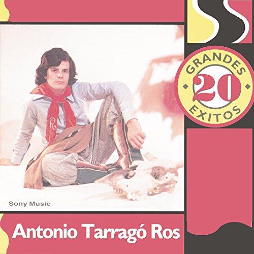 Tatu Niño