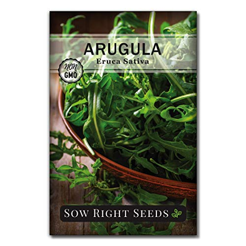 Sow Right Seeds - Arugula Seed for Planting - 900 Non-GMO Heirloom Seeds Per Packet with Instructions to Plant a Kitchen Herb Garden, Indoors or Outdoor; Great Gardening Gift