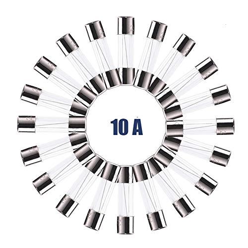 20 Pack F10AL Fast-Blow Fuse 10A 125V/250V Glass Fuses 5 x 20mm (10amp) (F10A) by FENGWANGLI