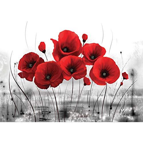 Papel Pintado Pared Flores Amapolas Marca blooboxx - Fototapete Türtapete Leinwandbilder