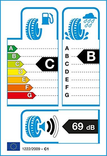 Fortuna EcoPlus UHP XL - 255/35R18 94W - Sommerreifen