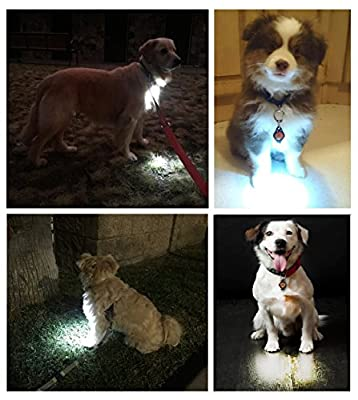 [New Dog Light] Bubba's Leash Light® 2 Lights Included! Dog Collar Light for Dog Walks & Nighttime Backyard Monitoring, Attaches to Leash, Dog Collar, ID Tags, Harness, For Small Dogs and Large Dogs