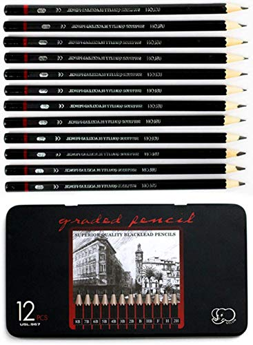 Professional Drawing Sketch Pencils Set-12 Pieces Art Drawing Graphite Pencils(8B - 2H) Ideal for Drawing Art Sketching Shading for Students Beginners & Pro Artists
