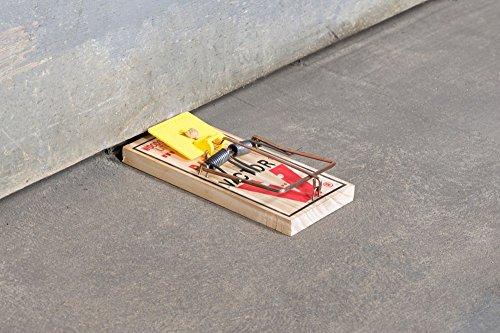 Easy Set Mice Trap M325 - 12 Traps