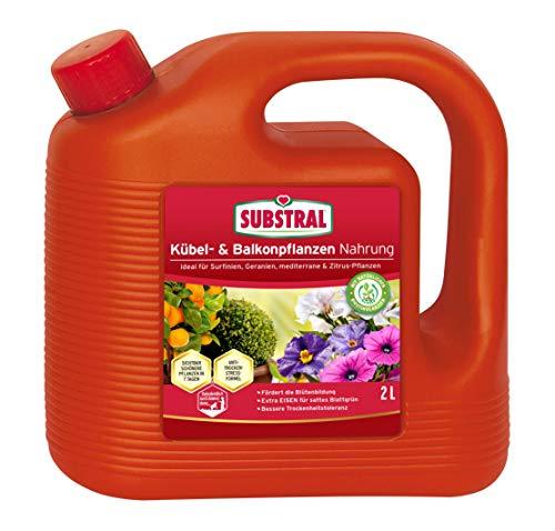 Substral Balkon und Kübelpflanzen Nahrung, Qualitäts-Flüssigdünger für alle Blühpflanzen auf Balkon, Terrasse und Beet mit natürlichen Biostimulanzien, 2 Liter
