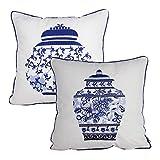 Queenie - 2 Pcs Traditional Chinese Blue & White Porcelain Series 100% Cotton Embroidered Decorative Pillowcase Cushion Cover Throw Pillow Case 18 X 18 Inch 45 X 45 cm (2, Pot Bundle Set)