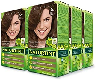 Naturtint Permanent Hair Color 5G Light Golden Chestnut (Pack of 6), Ammonia Free, Vegan, Cruelty Free, up to 100% Gray Co...