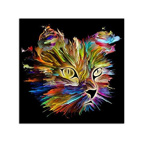 Startonight Impression sur Verre Acrylique Tableau - Chat Multicolore - Moderne Image en Verre 60 x 60 cm