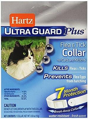 Hartz UltraGuard Plus Flea And Tick Kitten And Cat Collar
