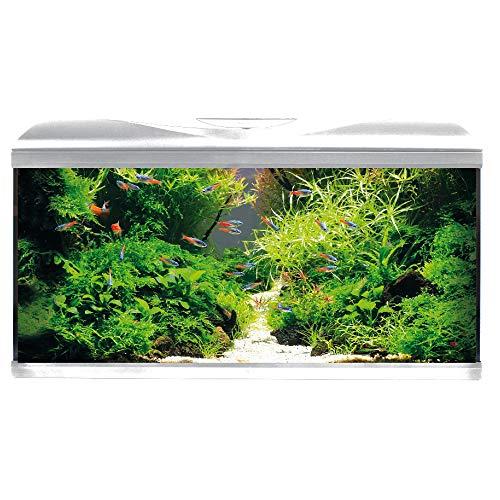 Amtra System 80 LED White/Acquario Completo di Illuminazione LED, Filtro e riscaldatore/cm 80x32x48 / 85 Litri
