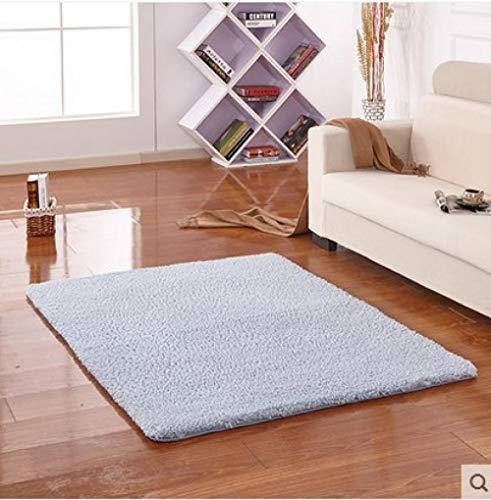 YUANCJ Home Wohnzimmer Teppich,Langes Haar Verdickung Teppich Lamm Samt Nachahmung Mähne Antarktis Samt Teppich Wohnzimmer Tür Couchtisch absorbierende Anti-Rutsch-Tür Silbergrau, 140 × 200 cm
