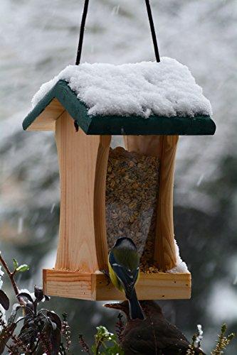 dobar 90061FSCe Futterspender Vogelhaus aus Holz für Wildvögel, 16 x 16 x 24 cm, grün - 2
