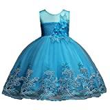Pageant Dresses for Toddlers 6T Sequin Prom Dress for Girl Lace Sleeveless Summer Formal Dress for Little Girls Blue 5-6 7 Years Wedding Birthday Party Dresses Girls Gift Beautiful Tops (Blue 130)
