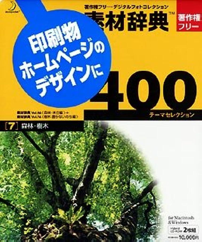 みぞれ広範囲令状素材辞典 400 7 森林?樹木