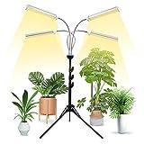Grow Lights for Indoor Plants Full...