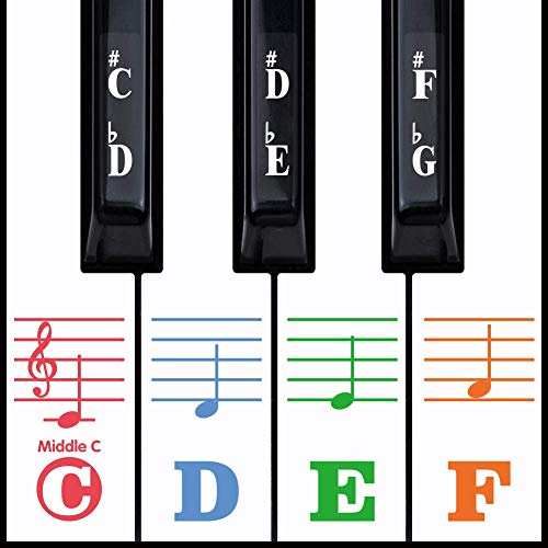 Kids Piano Keyboard Stickers for 88/61/54/49/37 Key. Colorful Large Bold Letter Piano Stickers Perfect for kids Learning Piano. Multi-Color,Transparent,Removable