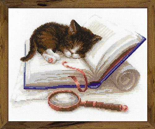 Riolis Kätzchen auf dem Buch Kreuzstich-Set, Baumwolle, Mehrfarbig, 30 x 24 cm