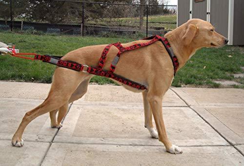 Wheel Dog X Back Zuggeschirr Hundegeschirr für Zughundesport Canicross, Dogscooting, Bikejöring, Dogtrekking (L Halsumfang ca. 44cm-48cm, Rot)