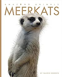 Amazing Animals: Meerkats Paperback