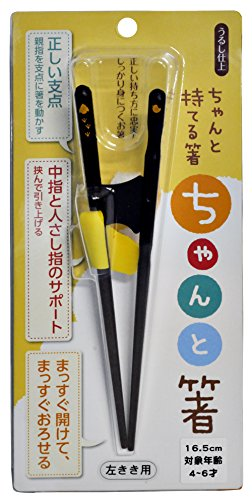 イシダ 箸のもちかたをサポート ちゃんと箸 こども用 16.5cm 左利き用 ブラック