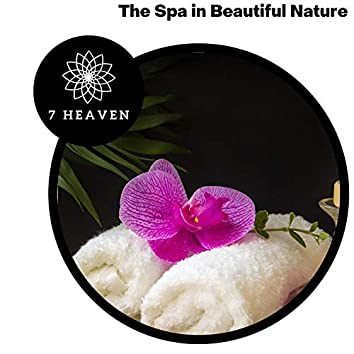 The Spa In Beautiful Nature