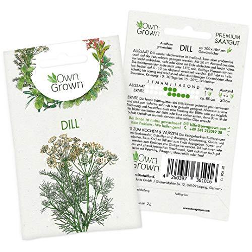 Dill Samen (Anethum graveolens): Premium Kräuter Samen für die Anzucht von ca 600 Dill Pflanzen - Dill Saatgut für Garten Kräuter und Balkon Kräuter - Wildkräuter Samen - Gartenkräuter OwnGrown Samen