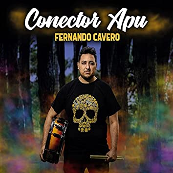 Conector Apu