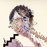 Songtexte von Animal Collective - Painting With