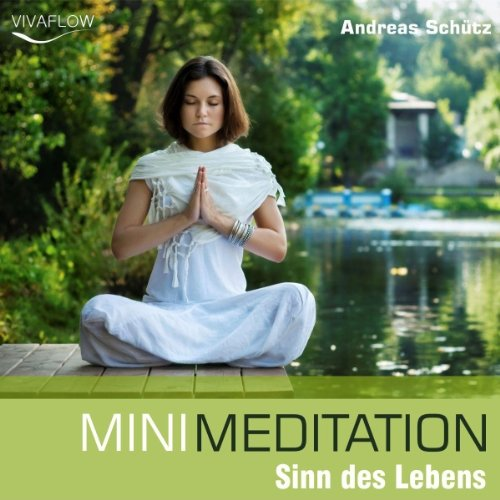 Mini Meditation: Sinn des Lebens audiobook cover art