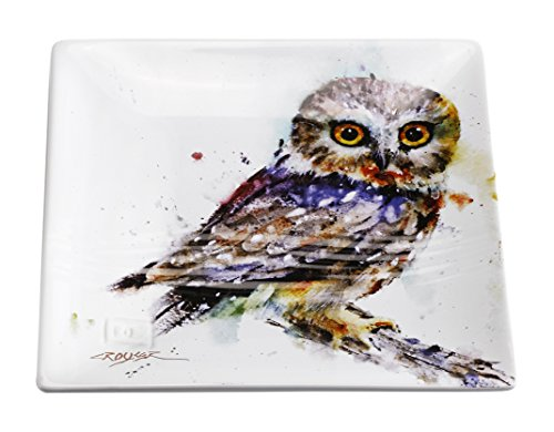 Big Sky Carvers Saw Whet Owl Snack Plate, Multicolor