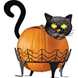 Collections Etc Black Cat Pumpkin Holder with Light Up Eyes - 3 PC