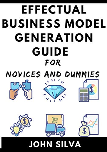 Effectual Business Model Generation For Novices And Dummies (English Edition)