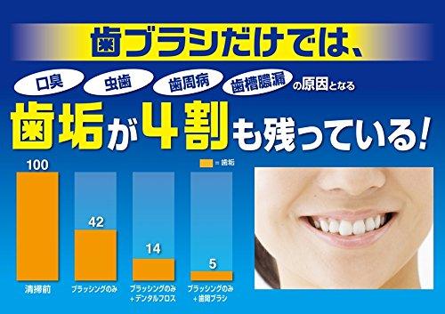 小林製薬『やわらか歯間ブラシ』