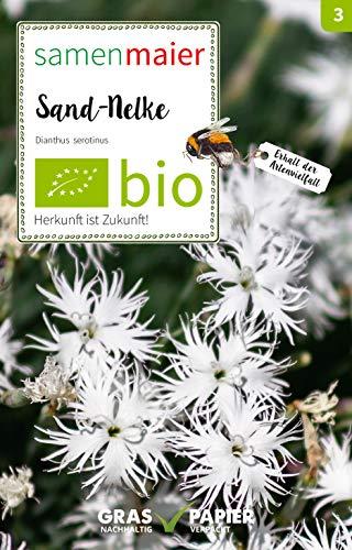 Samen Maier E03037 Wildblume Sand-Nelke (Bio-Blumensamen)