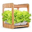 LEDプランター 室内栽培セット 植物育成プランター LED照明付水耕栽培キット (Mee-Kitchen)